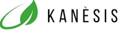 Content marketing per Kanesis - https://lamentapiperita.com/2015/11/20/canapa-la-rivoluzione-riparte-dalloro-verde/