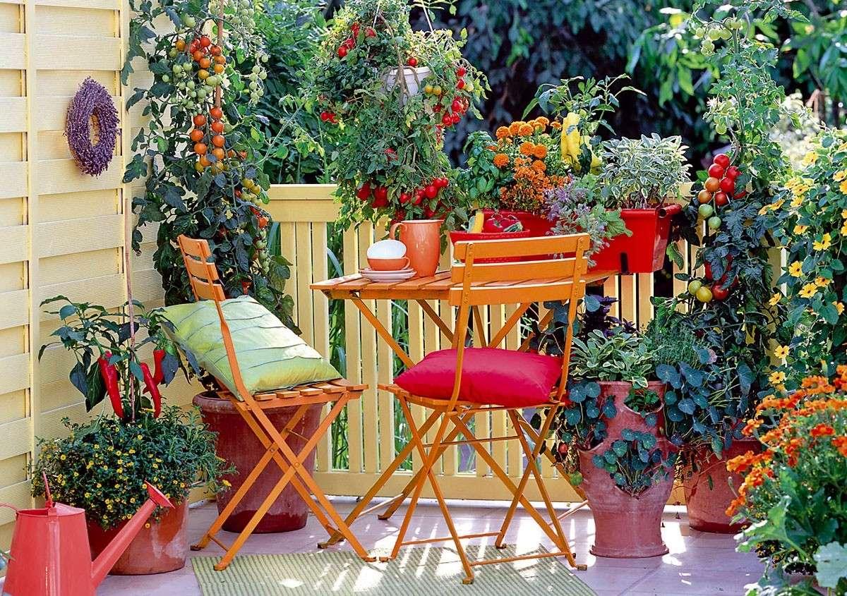 Arredare con le piante consigli per una casa pi green for Solo piante