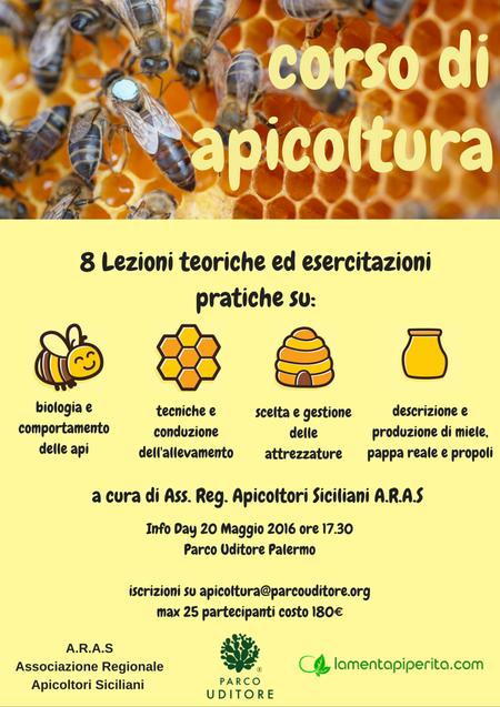 corso-apicoltura