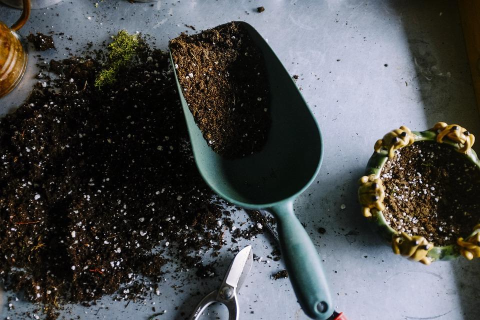 gardening-690940_960_720