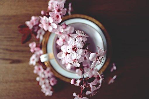 spring-2174750__340